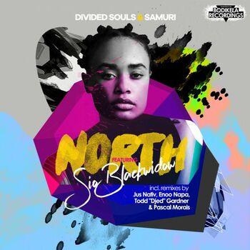 North : North cover