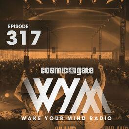 Album cover of Wake Your Mind Radio 317