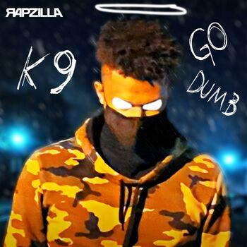 Go Dumb cover
