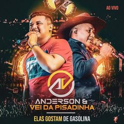Download Anderson e Vei da Pisadinha – Elas Gostam de Gasolina (Ao Vivo) MP3 320 Kbps Torrent