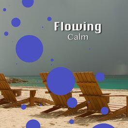 Album cover of # 1 Album: Flowing Calm