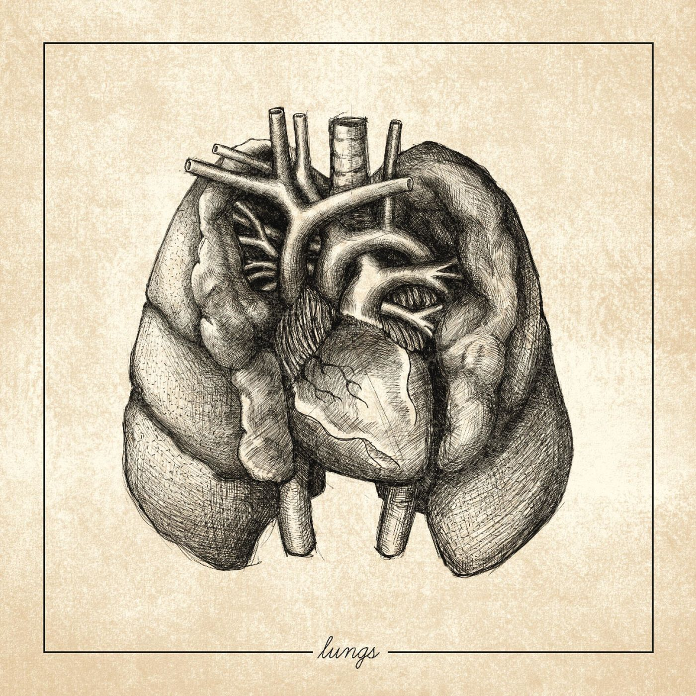 Regrowth - Lungs (2020)