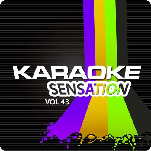 Karaoke Bar Orchestra: Karaoke Sensation, Vol  43 : Best of Lady
