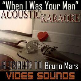 Vides Sounds: I Don't Wanna Live Forever (Acoustic Karaoke Version