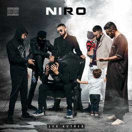 niro virage