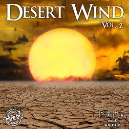 Album cover of Desert Wind, Vol. 2