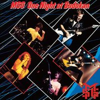 More - MICHAEL SCHENKER