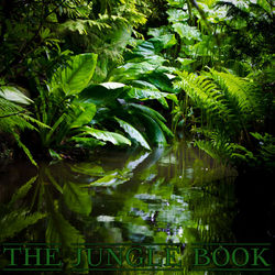The Jungle Book VIP Edition