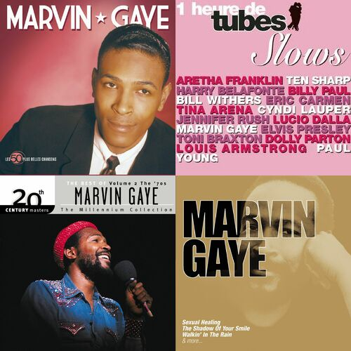 Marvin gaye sexualing healing slowed