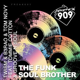 Album cover of Funk Soul Brother