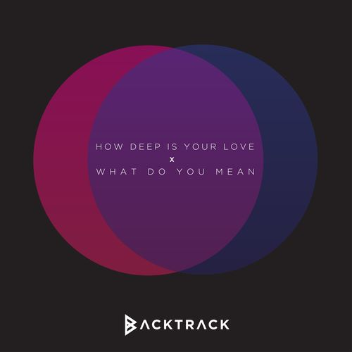Backtrack: How Deep Is Your Love / What Do You Mean? (Mashup