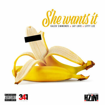 She Wants It cover