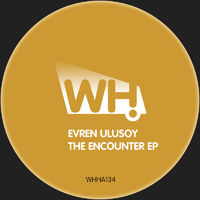 Encounter (Sous Sol rmx) - EVREN ULUSOY