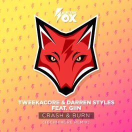 Album cover of Crash & Burn (Technikore Remix)