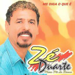 ZE DUARTE – Me Diga o Que É 2017 CD Completo
