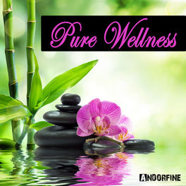Album cover of Pure Wellness