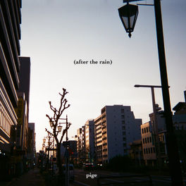 Album cover of (after the rain)