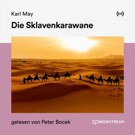 Album cover of Die Sklavenkarawane