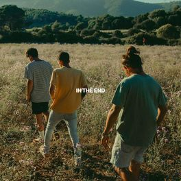 Album cover of In The End