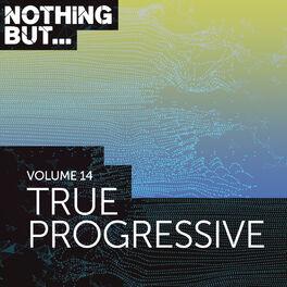 Album cover of Nothing But... True Progressive, Vol. 14