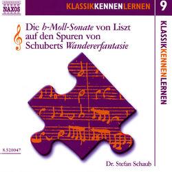 Klassik Kennen Lernen 9: Die H-Moll-Sonate Von Liszt Auf Den Spuren Von Schuberts Wandererfantasie Hörbuch kostenlos
