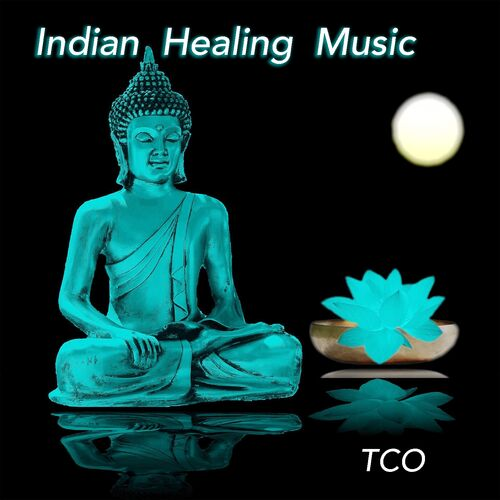 TCO: Indian Healing Music (1 Hour Relaxing Indian Music for