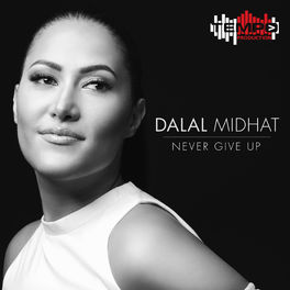 Album cover of Never give up