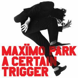 Album cover of A Certain Trigger