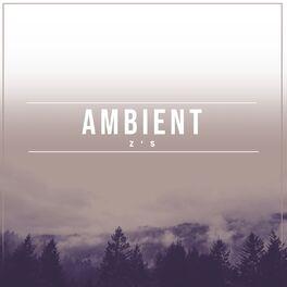 Album cover of # 1 Album: Ambient Z's