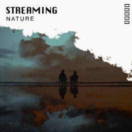 Album cover of # 1 Album: Streaming Nature