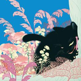 Album cover of Jigoo