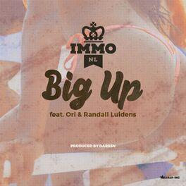 Album cover of Big Up (feat. Ori & Randall Luidens)