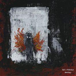 Album cover of Амнезия