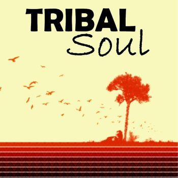 Tribal Phunk cover