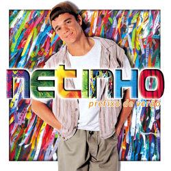 Netinho – Prefixo De Verão 2013 CD Completo
