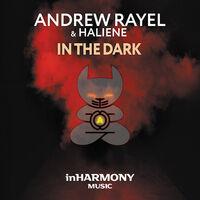 In The Dark! - ANDREW RAYEL-HALIENE