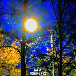 Album cover of The Thunder Inside