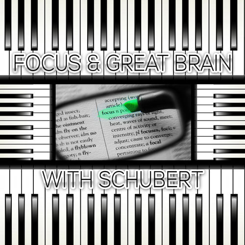 Focus Music Company: Focus & Great Brain with Schubert