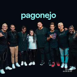Download Pagonejo 2021