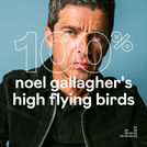 100% Noel Gallagher\'s High Flying Birds