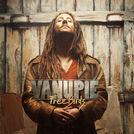 Zoom sur Vanupié - Roots/Rock/Folk