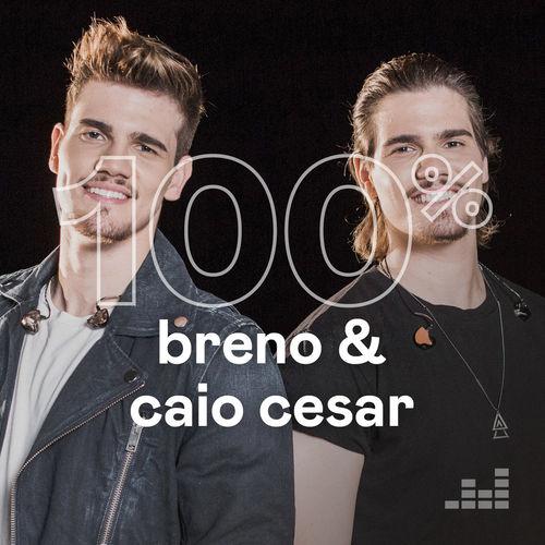 100% Breno e Caio Cesar 2020 CD Completo