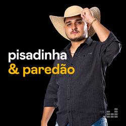 Pisadinha e Paredão 2021 CD Completo
