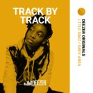Grey Area : the track by track