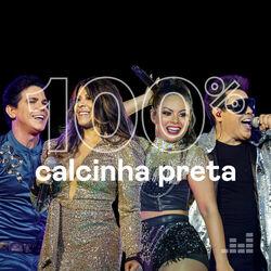 100% Calcinha Preta 2020 CD Completo