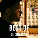 DJ Shadow Best Of