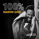 100% Marvin Gaye