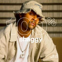 100% Shaggy 2020 CD Completo