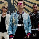 100% Muse