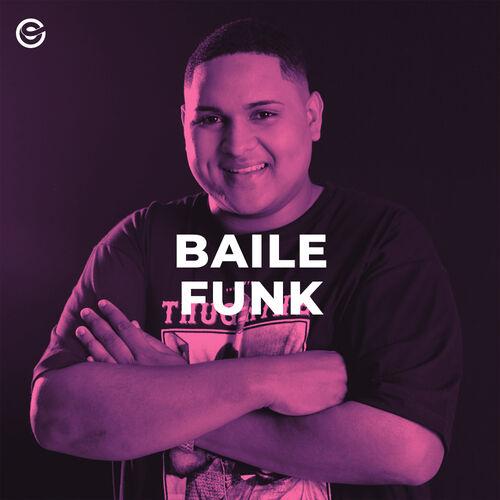 Baixar CD Baile Funk – Vários Artistas (2019) Grátis